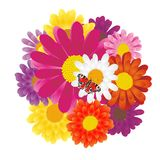 Lovely background with flowers Royalty Free Stock Image