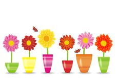 Lovely background with flowers Stock Photo