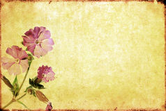 Lovely background image Royalty Free Stock Images