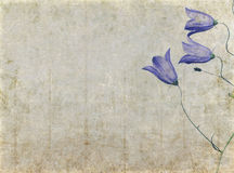 Lovely background image Stock Photos