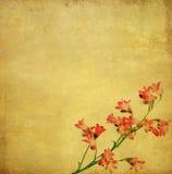 Lovely background image Stock Photo