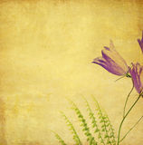 Lovely background image. Earthy background image with floral elements. useful design element Royalty Free Stock Photos