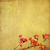Lovely background image. Earthy background image with floral elements. useful design element Royalty Free Stock Images