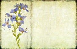 Lovely background image Stock Photography