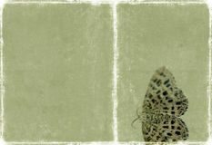 Lovely background texture Stock Photo