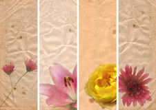 Lovely banners with floral elements Royalty Free Stock Photography