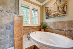 Lovely bathroom boasts jetted tub with a brown mosaic tile surround Stock Image
