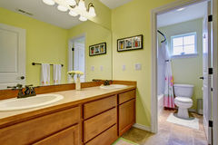 Lovely bathroom with lime green walls. Royalty Free Stock Photos