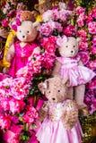 Lovely bear dolls Stock Photos