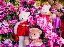 Lovely bear dolls Royalty Free Stock Image