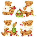 Lovely bear. I drew the bear which I loved Royalty Free Stock Photo