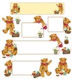 Lovely bear Stock Images
