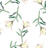 Lovely beautiful subtle yellow lily  isolated seamless pattern watercolor Royalty Free Stock Image