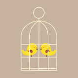 Lovely Birds In Cage Stock Photo
