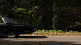 Lovely black car in the park stock video