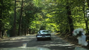 Lovely black car in the park stock footage