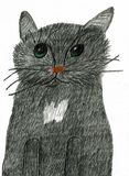 Lovely Black Cat with Impressionable Eyes Stock Images