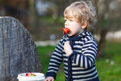 Lovely blond boy of two years eating strawberries outdoors Royalty Free Stock Images