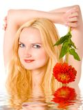 Lovely blond with flower in water stock images