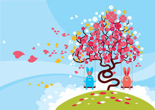 Lovely Blossom Royalty Free Stock Images