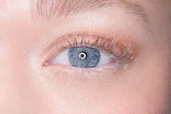 Lovely blue eye of a young woman Stock Image