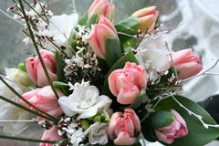 Lovely bouquet. Bouquet for congratulation with pink Tulips and lovely white flowers Royalty Free Stock Photos