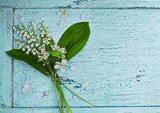 Lovely bouquet of lilies of the valley Stock Photography