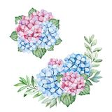 2 Lovely bouquets with blue and purple hydrangea flowers,branches and leaves. Watercolor bouquets for your design.Perfect for wedding,invitations,blogs,template stock illustration