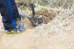 Lovely Boy Planting Royalty Free Stock Photography