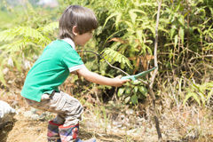 Lovely Boy Planting Royalty Free Stock Images