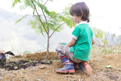 Lovely Boy Planting Stock Images