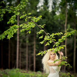 Lovely bride  in a forest Stock Images