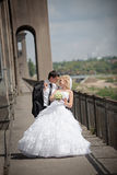 Lovely bride and groom on the bridge Stock Photos