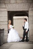 Lovely bride and groom on the bridge Stock Images