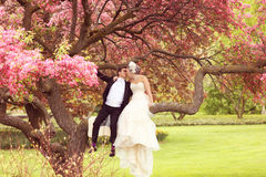 Lovely bride and groom Stock Photo