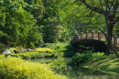 Lovely bridge crossing a lake in a beautifully landscaped Thai park. Lovely bridge crossing a lake in a beautifully landscaped park in Bangkok, Thailand Royalty Free Stock Images
