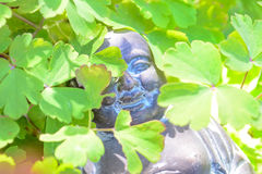 The lovely buddha staty in the sun Stock Image