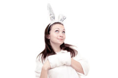 Lovely bunny Royalty Free Stock Photography
