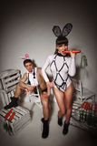 Lovely bunny couple Royalty Free Stock Photography