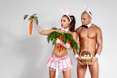 Lovely bunny couple Royalty Free Stock Images