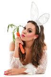 Lovely bunny Stock Images