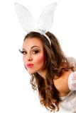 Lovely bunny Royalty Free Stock Photo