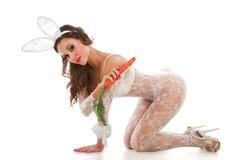 Lovely bunny Stock Image