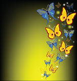 Lovely butterflies. Colourful butterflies on a multi-colored and dark background Royalty Free Stock Photography