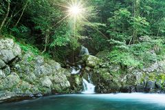 A lovely cascade flowing into a stream in a mysterious forest with sunlight shining through the lush greenery. ~ River scenery of Taiwan in springtime Royalty Free Stock Photography