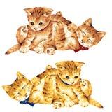 Lovely cat stock illustration