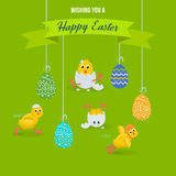 Lovely chickens have fun, celebrate, indulge, in Easter, run, fly. Stock Photos