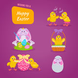Lovely chickens have fun, celebrate, indulge, in Easter, run, fly. Stock Photography