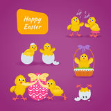 Lovely chickens have fun, celebrate, indulge, in Easter, run, fly. Royalty Free Stock Photos