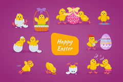 Lovely chickens have fun, celebrate, indulge, in Easter, run, fly. Royalty Free Stock Image